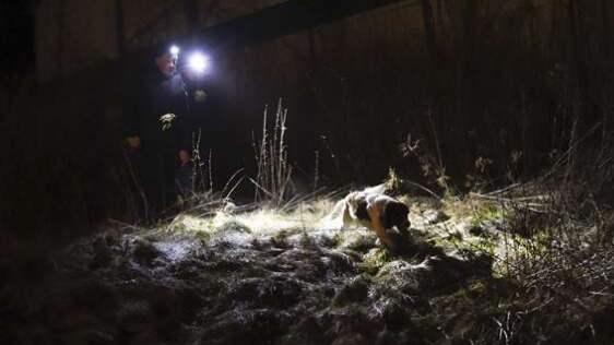 Här hittades 13-åringens jämårige kamrat den 9 mars i år svårt knivskuren.Han dödades av 13-åringen som erkänt Foto: Jens Christian
