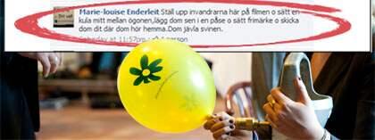 Sverigedemokraternas kandidat Marie-Louise Enderleit på sin Facebook-sida. OBS! Bilden är ett montage. Foto: Scanpix