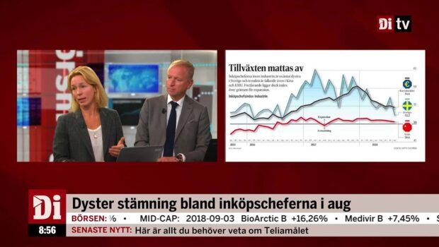"""Jeansson: """"Sättning i PMI indikerar en lugnare börsutveckling"""""""