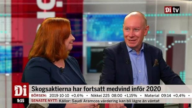 """Söderfjell om förväntningarna på skog Inför Q3: """"Positiv"""""""